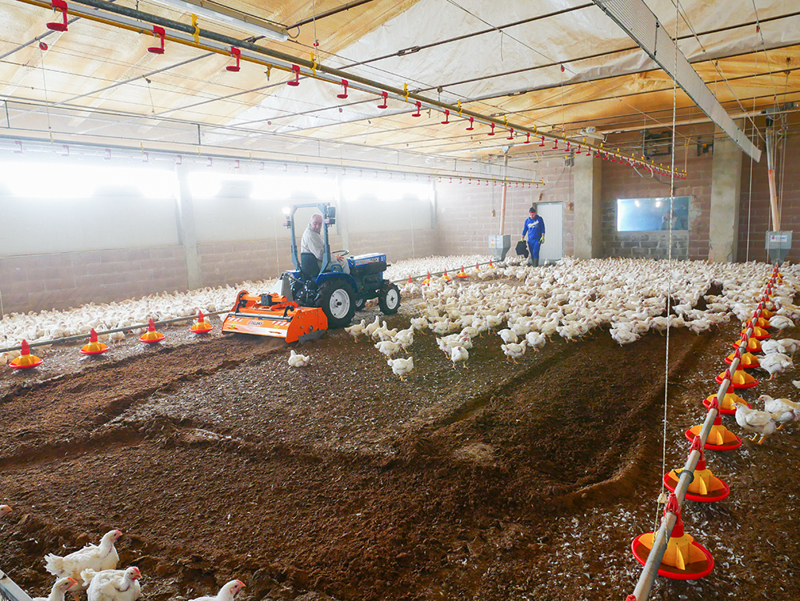 fräse-für-das-zerhacken-und-mischen-des-einstreu-von-geflügelfarmen-und-kühställe-pavo-120